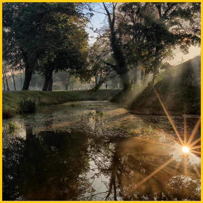 Kleiner Teich mit Bäumen ringsum und Spiegelungen der Sonne auf dem Bach Radweg durchgeführt vom Werra Bikes