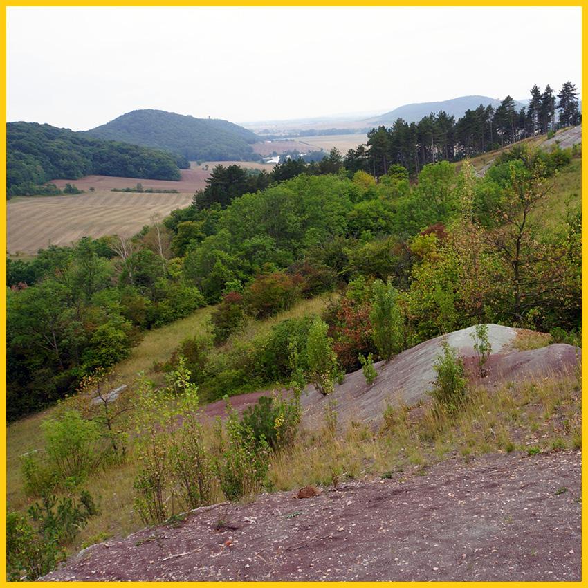 Landschaft mit Feldern und Hügeln und Wälder im Landkreis Gotha auf dem Bach Radweg durchgeführt vom Werra Bikes