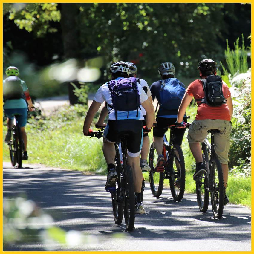Biker mit Fahrradhelmen und Rucksäcken auf einem geteerten Weg von hinten fotografiert auf dem Bierradweg durchgeführt vom Werra Bikes
