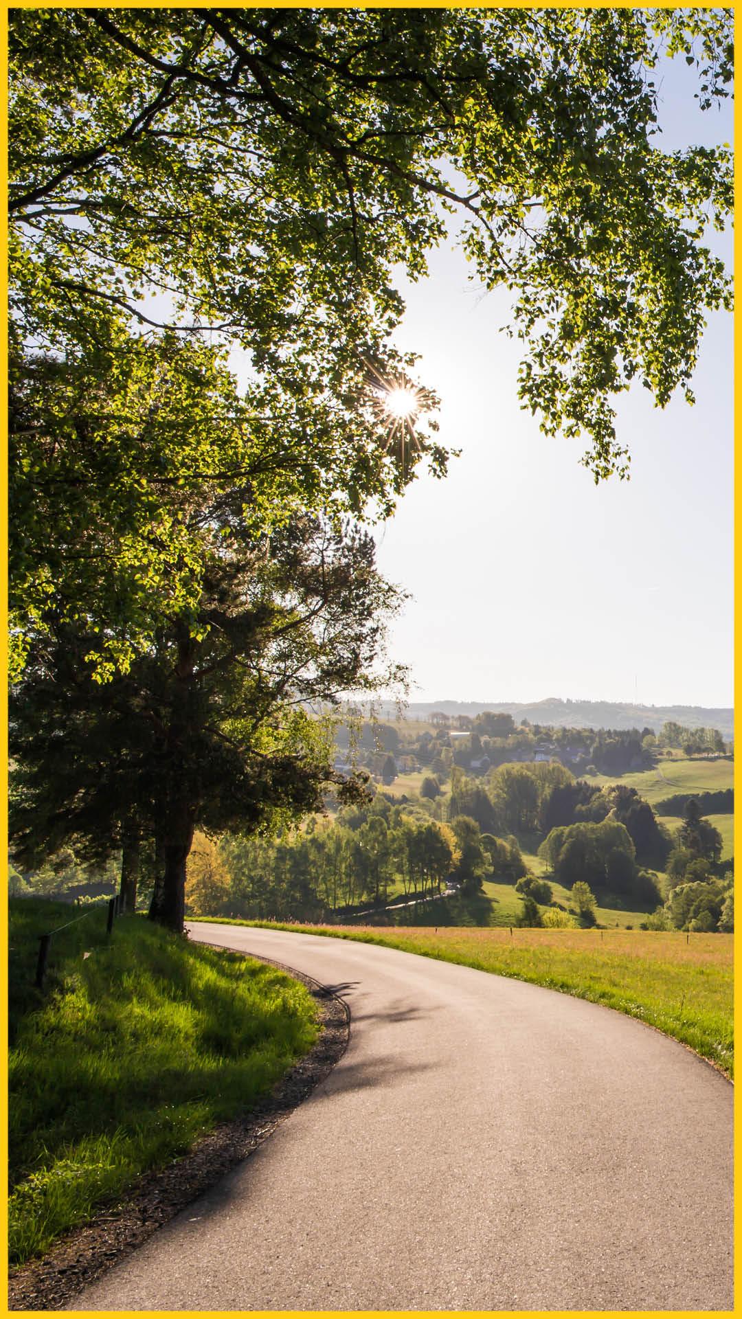 Landschaft in der Rhön mit Wiesen, Wäldern, einer kleinen Straße und einem Dorf auf einem Hügel entlang dem Bierradweg durchgeführt vom Werra Bikes