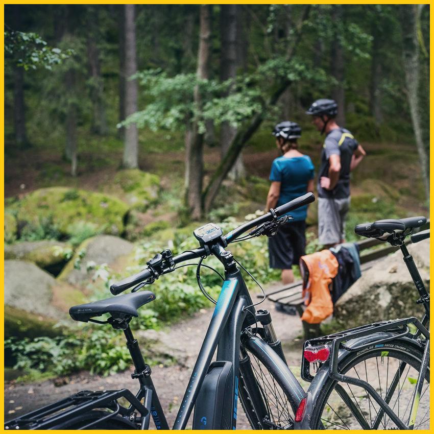 CUBE Hybrid E-Bikes im Vordergrund bei einer kleinen Pause am Waldrand auf dem vom Ilmtalradweg durchgeführt vom Werra Bikes