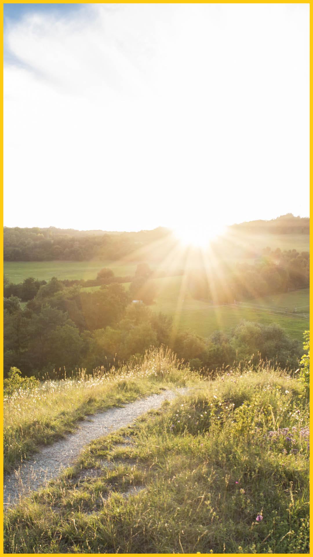 Hügellandschaft mit Wiesen und Sträuchern mit blauem Himmel und Sonnenuntergang bei Jena auf dem Radweg Thüringer Städtekette durchgeführt vom Werra Bikes